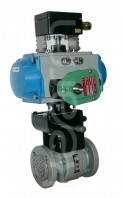 ball valve with floating seats